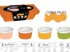 BOWL HELADO + CUCHARA SET REGALO