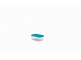 CAJA MULTI-BOX  5,5 L